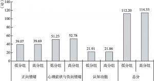 图3 高自尊者与低自尊者在心理健康得分上的比较