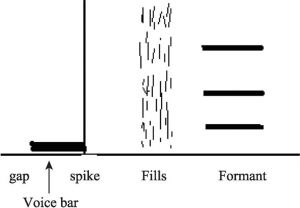 图3.7 辅音声学特征基本模式