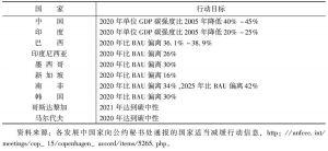 表2 部分发展中国家的减排行动及行动目标