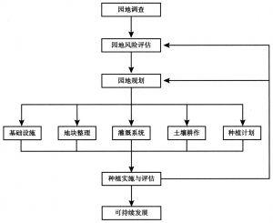 图21-3 白茶园地管理流程图