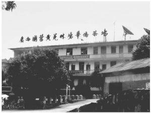 2011年6月,课题组成员到黄冕林场华侨茶场调研