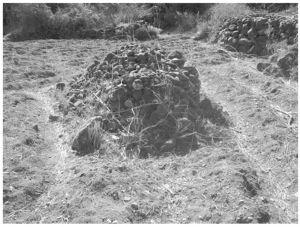 图5-2 纳西族墓地(笔者拍摄于2008年7月)