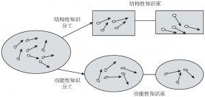 图7-8 以知识为基础的组织分工