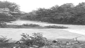 洪水泛滥的九道河