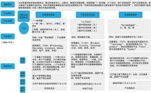 """图1-21 牡丹集团""""十三五""""期间集团化发展战略:1234发展战略"""