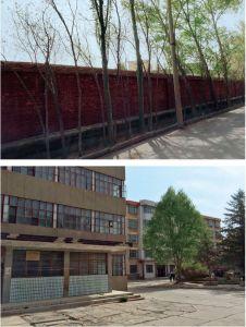 图9 红墙院落内的实习基地大楼