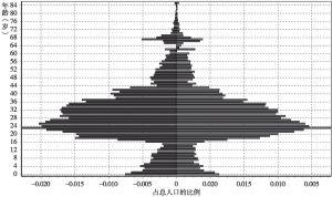 图9-16 2005年北京流动人口年龄结构