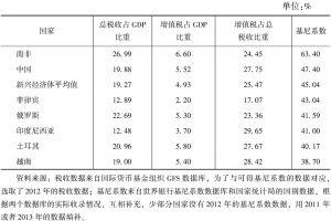 表10-10 新兴经济体的增值税