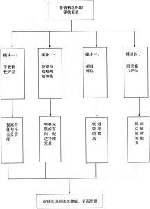 图2-8 中国非营利组织的评估框架