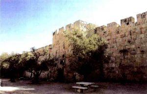 耶路撒冷的老城墙
