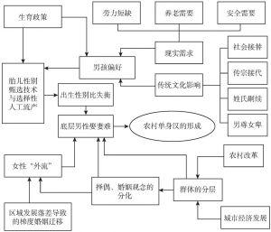 图2-1 农村单身汉形成机制的分析框架