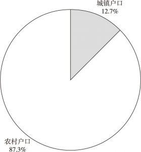 图2-3 卡嫂的户口类型
