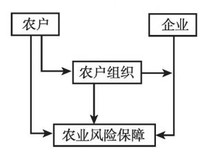 图10-2 农业微观经营主体组织结构